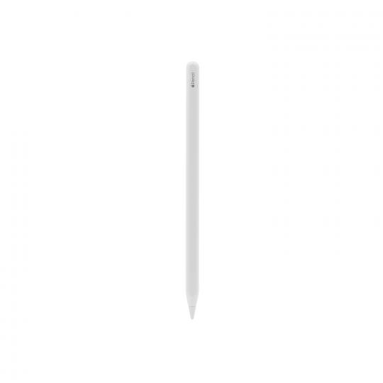 Apple Pencil 2. Generation weiß sehr gut