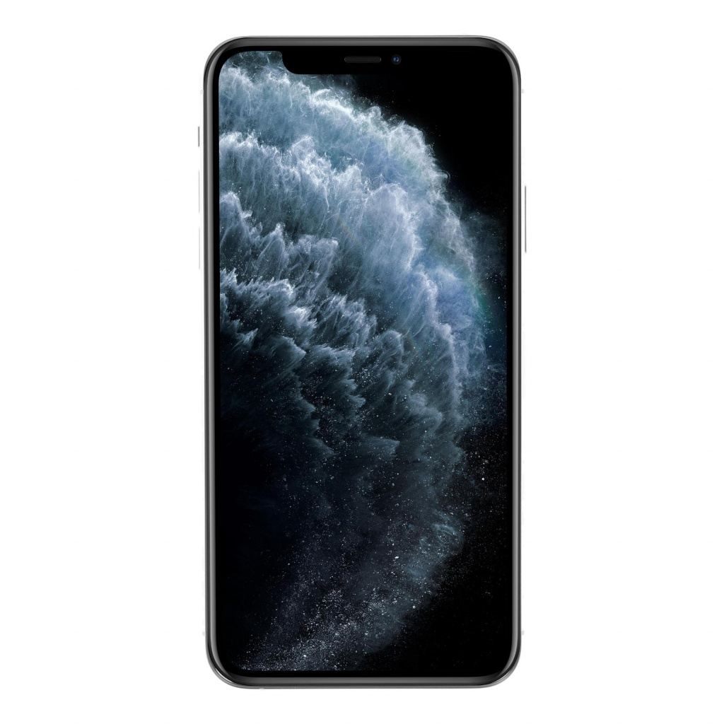 Apple iPhone 11 Pro Max 256GB silber sehr gut